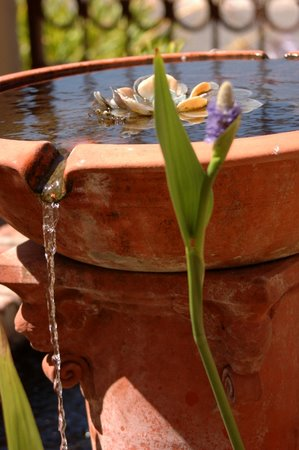 fountain1.jpg