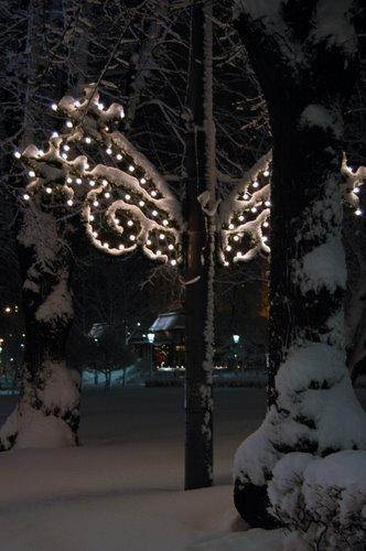christmas081-11-24-2008-8-30-47-pm