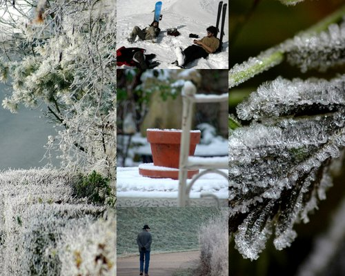 collagewinter08-12-20-2008-6-23-39-pm-12-20-2008-6-23-39-pm