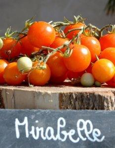 fete de tomate 25