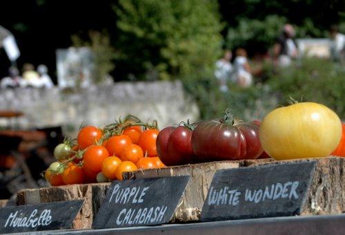 fete de tomate 26