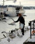 Oslo-feed the birds