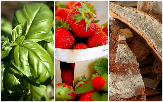 collage basil and strawberries