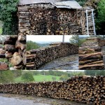woodpiles collage