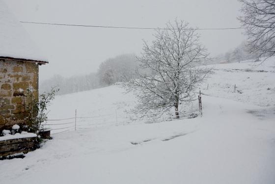 neige 2013-012