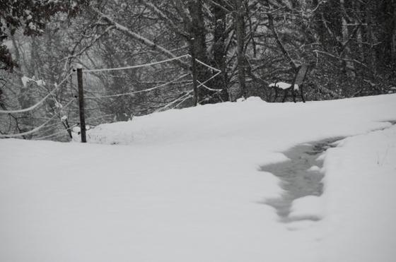neige 2013-019