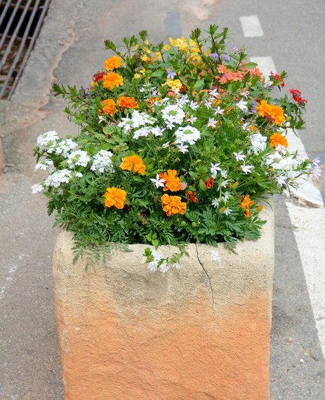 Provence 2013 28-06-2013 12-48-38 3165x3896