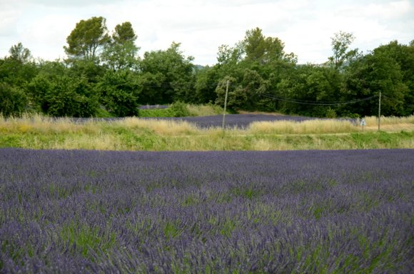 Provence 2013 28-06-2013 13-34-10 4928x3264