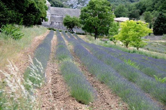 Provence 2013 28-06-2013 14-22-24 4928x3264