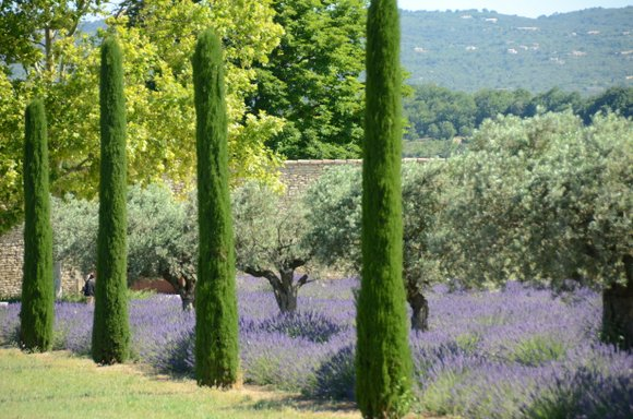 Provence 2013 29-06-2013 10-27-12 4928x3264