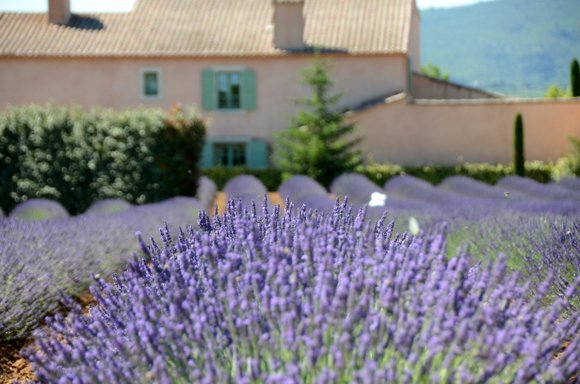 Provence 2013 29-06-2013 10-50-08 4928x3264