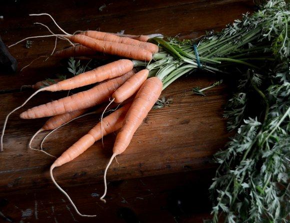 rainbow carrots 28-10-2013 12-37-27 3918x3016