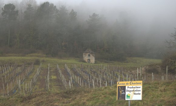Puy d'Arnac Charlone 2582x1563.NEF