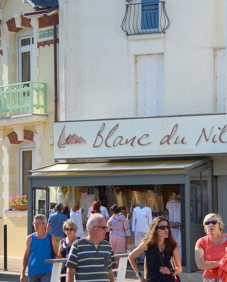 Bretagne in June  2899x3614