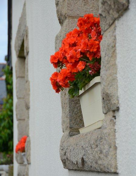 Bretagne in June  3264x4225