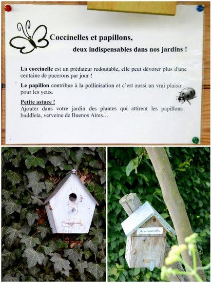 jardins de colette3