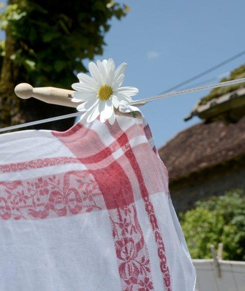 laundry 2763x3283