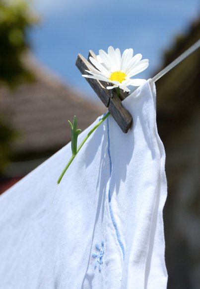 laundry 2815x4056