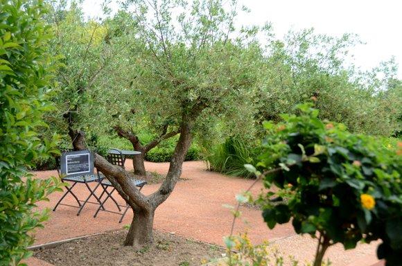 les jardins de Colette 4928x3264-016