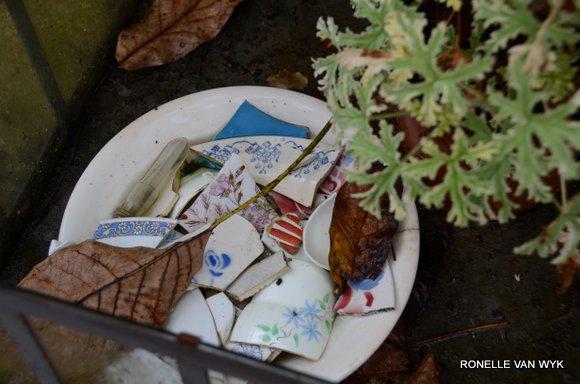 October scenes 4928x3264-002