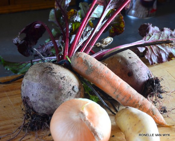 Ronelle's photography-beetroot-005