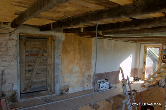 doors of my house.NEF-003