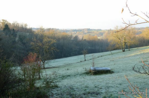 Jack Frost Decembre