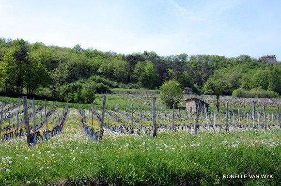 April greens-002