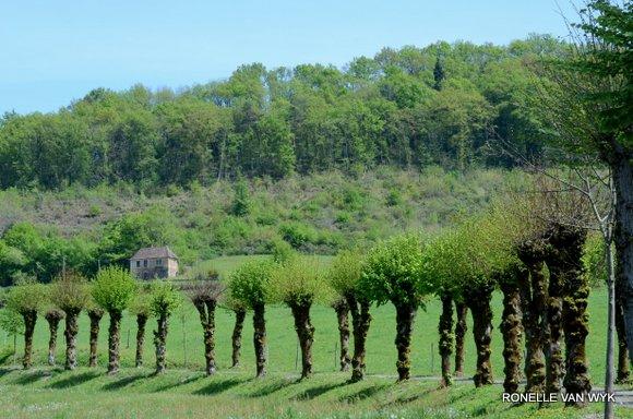 April greens