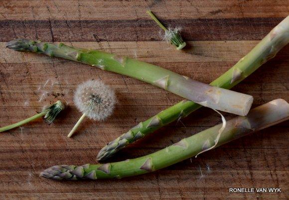 asparagus & dandelion seedhead