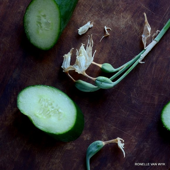 concombre et jonquille
