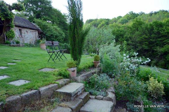 Garden in May-001